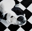 """Checker Dog"" Acrylics on Canvas 12""H x 12""W"